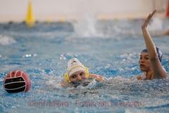 20180324 Waterpolo Den Haag - ZV Haerlem dames FvL 03-web